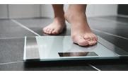Весы , анализаторы